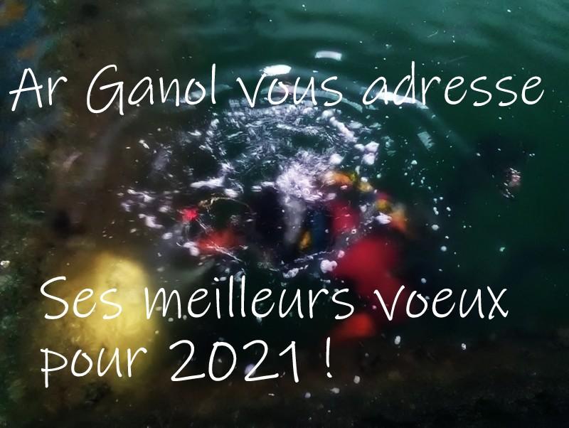 Ar Ganol vous souhaite une bonne année 2021